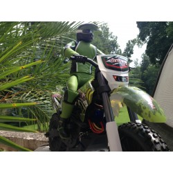 ZD racing Moto 1/5e verte