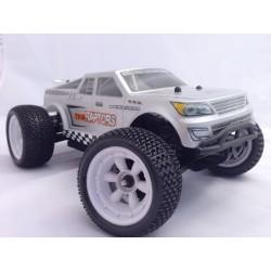 ZD racing Buggy 1/16e 9055